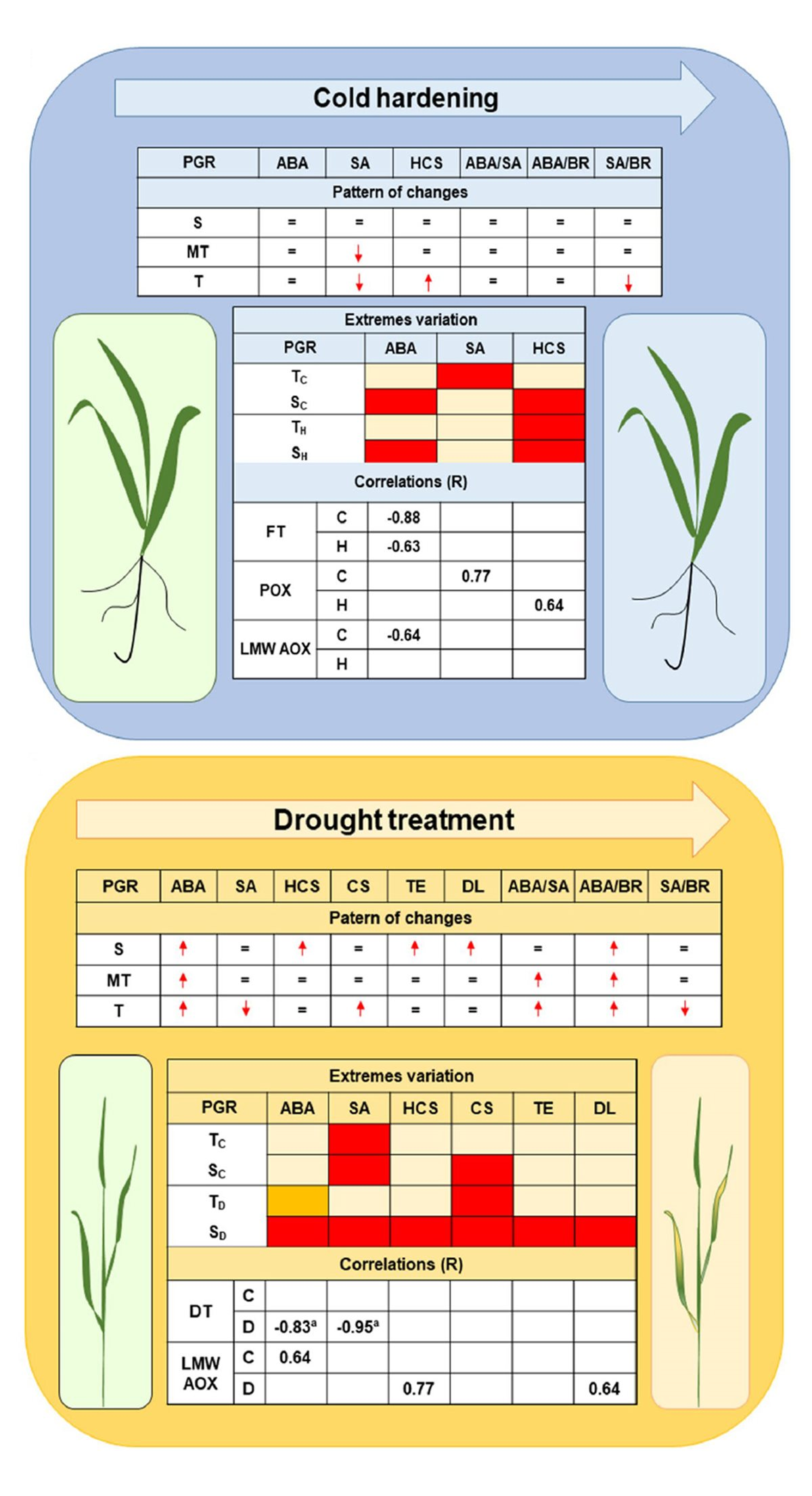 New publication: Involvement of homocastasterone, salicylic and abscisic acids in the regulation of drought and freezing tolerance in doubled haploid lines of winter barley